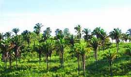São Domingos do Maranhão - Imagens da cidade de São Domingos do Maranhão - MA