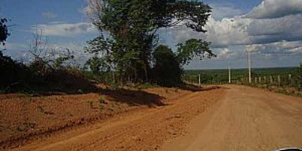 São Raimundo do Doca Bezerra-MA-Estrada do Povoado-Foto:Carlinhos