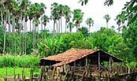 Sucupira do Riachão - Engenho da cachaça-Foto:Agamenon Pedrosa