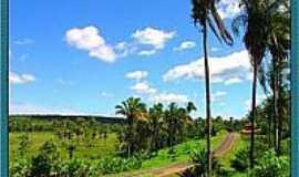 Sucupira do Riachão - Estrada para Sucupira do Riachão-Foto:Agamenon Pedrosa