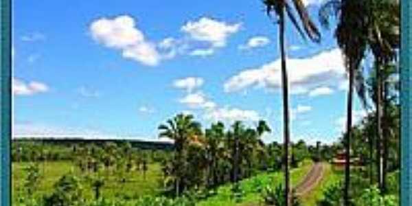 Estrada para Sucupira do Riachão-Foto:Agamenon Pedrosa