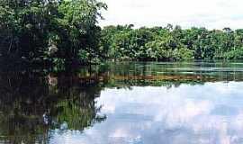 Santa Isabel do Rio Negro - Santa Isabel do Rio Negro-AM-Rio Negro-Foto:leslie tavares