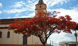 Abadia dos Dourados - Abadia dos Dourados-MG-Flamboyant ao lado da Matriz-Foto:Eduardo Revoredo