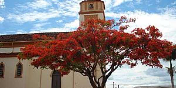 Abadia dos Dourados-MG-Flamboyant ao lado da Matriz-Foto:Eduardo Revoredo