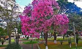 Alvinópolis - Imagens da cidade de Alvinópolis - MG