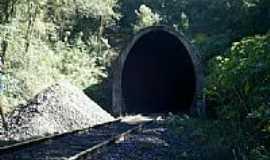 Arantina - Tunel do Espraiado-Foto:Emerson Jean Silva