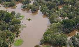 Tapauá - Tapauá-AM-Reserva Ecológica do Rio Abufari-Foto:leslie tavares