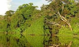 Tapauá - Tapauá-AM-Rio Abufari-Foto:leslie tavares