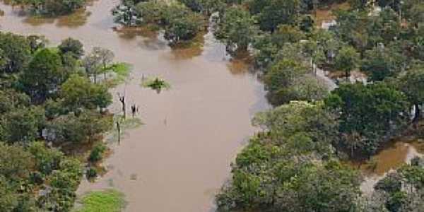 Tapau�-AM-Reserva Ecol�gica do Rio Abufari-Foto:leslie tavares