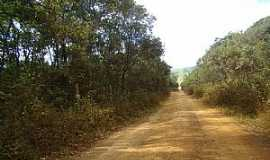 Bar�o de Cocais - Bar�o de Cocais-MG-Estrada de terra chegando na cidade-Foto:Jairo Nunes Ferreira