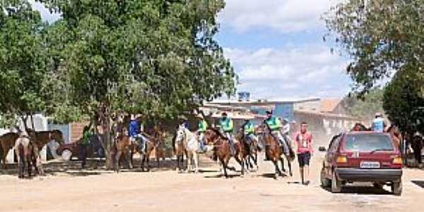 Festa de São Pedro e Barreiro Branco Cavalgada e Trilha