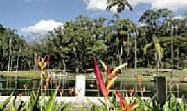 Belo Horizonte - Belo Horizonte-MG-Flores e o Lago do Parque Municipal-Foto:Paulo Yuji Takarada