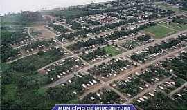 Urucurituba - Urucurituba-AM-Vista aérea da cidade-Foto:constituicao.aleam.gov.br