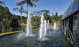 Betim - Parque Ecol�gico Vale Verde-Foto:Jose Gustavo A. Murt�