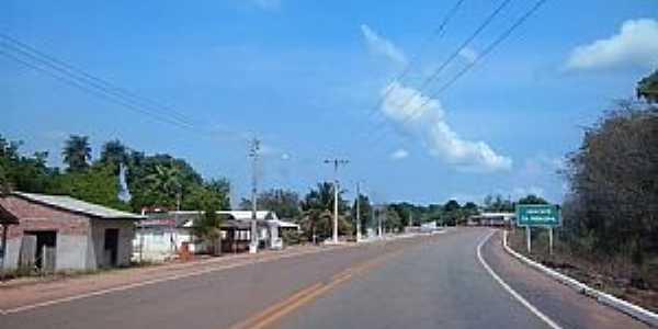 Abacate da Pedreira-AP-Rodovia AP-070 na entrada da vila-Foto:Alan Kardec