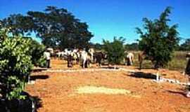 Bonfinópolis de Minas - Festa em Riacho das  Pedras