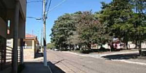 Borda da Mata-MG-Canteiro arborizado na avenida-Foto:Jorge Siqueira