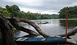Amapari - Rio Amapari em Amapari-AP-Foto:Carol Stellfeld