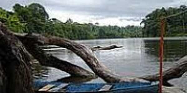 Rio Amapari em Amapari-AP-Foto:Carol Stellfeld