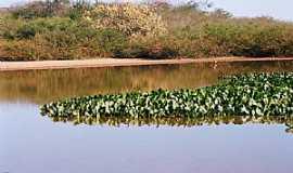 Caçarema - Caçarema-MG-Lagoa Bom Sucesso-Foto:aquiondeeumoro.
