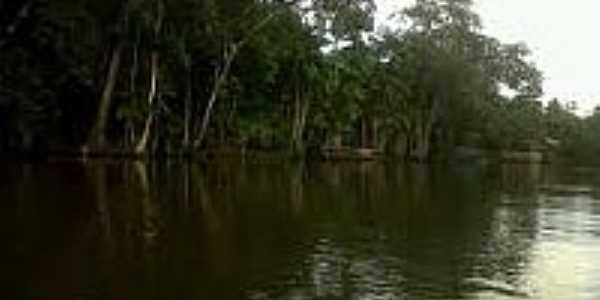 Rio Matapi em Ariri-AP-Foto:agenciaamapa.