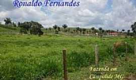 Campolide - Fazenda em Campolide-Foto:Ronaldo Fernandes Ol…
