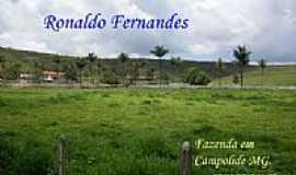 Campolide - Vista de fazenda em Campolide-Foto:Ronaldo Fernandes Ol…
