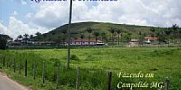Fazenda em Campolide-Foto:Ronaldo Fernandes Ol…