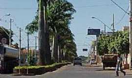 Campos Gerais - Avenida Getúlio Vargas-Foto:Paulo Daniel