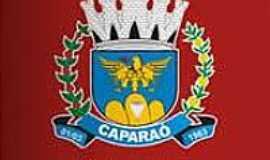 Caparaó - Brasão de Caparaó-MG