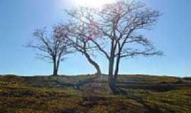 Capim Branco - Imagem rural
