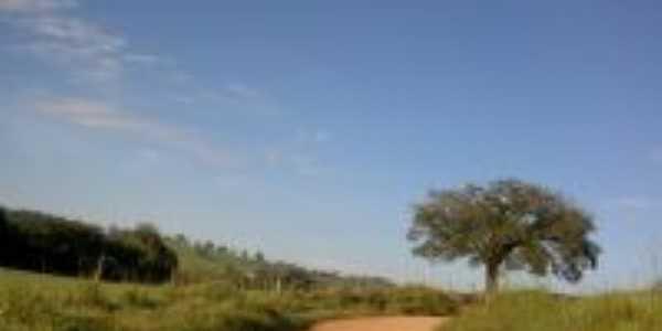 Estrada para Boa Vista, Por Marcos Vinícius