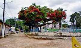 Carlos Alves - Praça central-Foto:Genesio Tezza Pereir… [Panoramio]