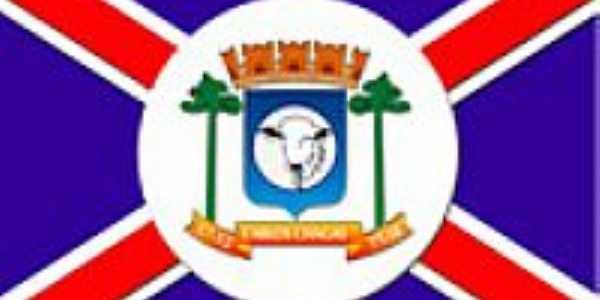 Bandeira de Carlos Chagas