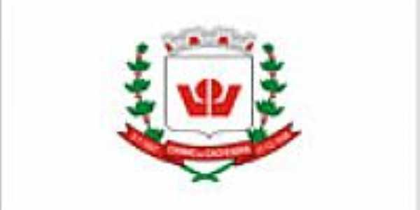 Bandeira_Carmo_da_Cachoeira_MG