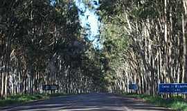 Carmo do Paranaíba - Entrada da cidade - Por por Neide Oliveira