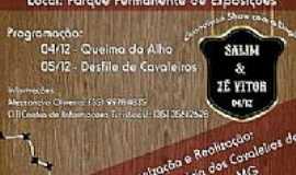 Carmo do Rio Claro - II Festa da Queima do Alho