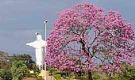 Carneirinho - Entrada da cidade-Foto:Angelo Marcondes de …