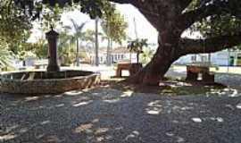 Cascalho Rico - Cascalho Rico-MG-Chafariz e Gameleira Hist�rica-Foto:Anivaldo Gon�alves