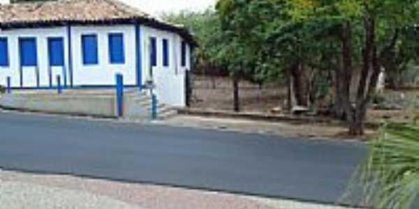Cascalho Rico-MG-Árvores ao lado do Casarão-Foto:Anivaldo Gonçalves
