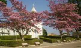 Cedro do Abaeté - jardim da igreja, Por Ilis