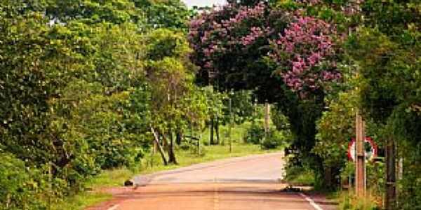Curiaú-Rodovia AP-070-Foto:www.titogarcez.com
