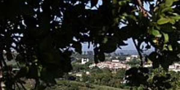 Vista da cidade-Foto:altairalvim [Panoramio]