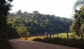 Conceição de Minas - Conceição de Minas-MG-Estrada para o Distrito-Foto:José Rosário