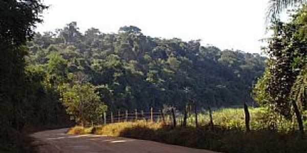 Conceição de Minas-MG-Estrada para o Distrito-Foto:José Rosário