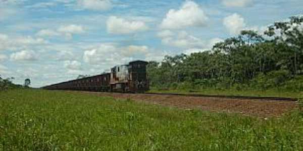 Ferreira Gomes-AP-Trem de Min�rio de Ferro-Foto:Alan Kardec