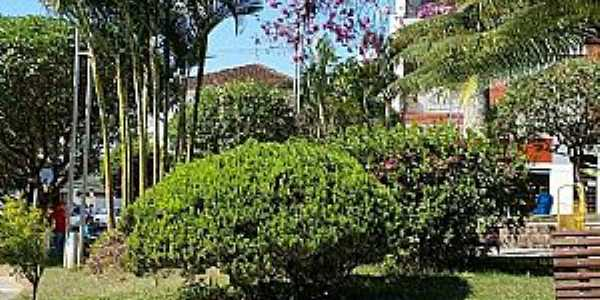 Congonhal-MG-Praça Comendador Ferreira de Matos-Foto:Facebook