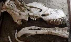 Cora��o de Jesus - f�sseis do tapuiossaurus encontrado em Cora��o de Jesus, Por madeleine