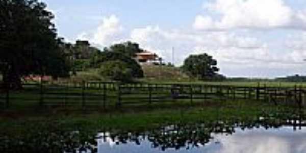Igarapé do Lago por Fernanda Oliveira