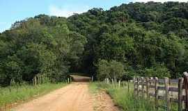 Crisólia - Crisólia-MG-Estrada para Taboão-Foto:JoBaAm